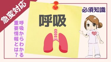 【バイタルサインに強い看護師になる】呼吸からこんなにも重要な情報が分かる!